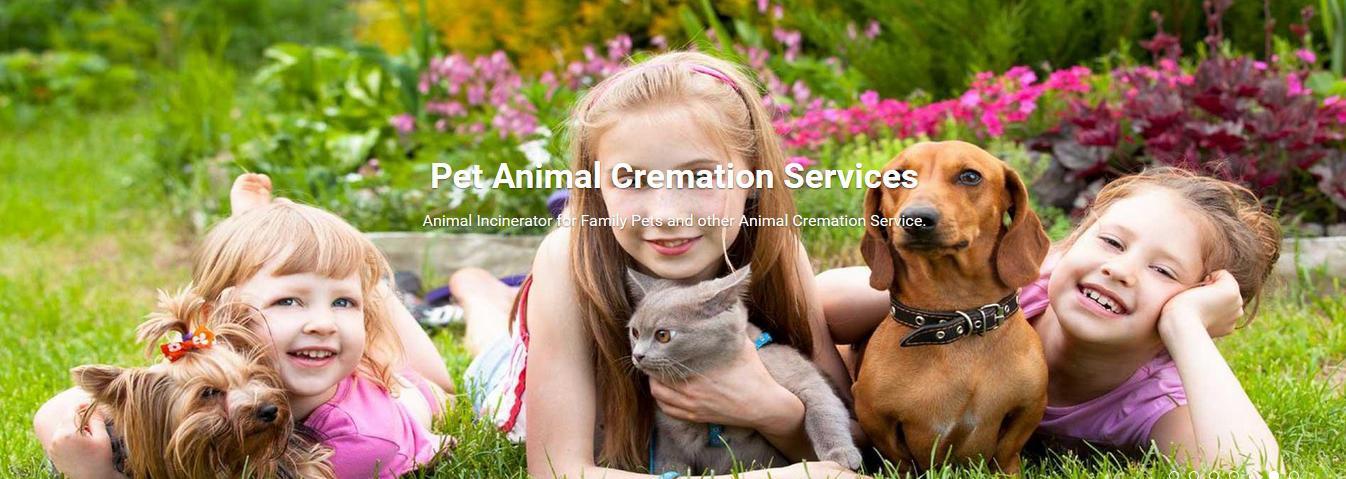 pet incinerator for sale
